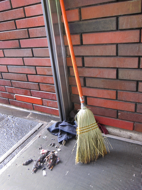broom with debris