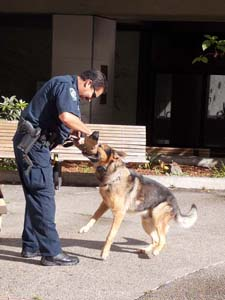 K-9 Officer Al Zamora and his dog Umar.