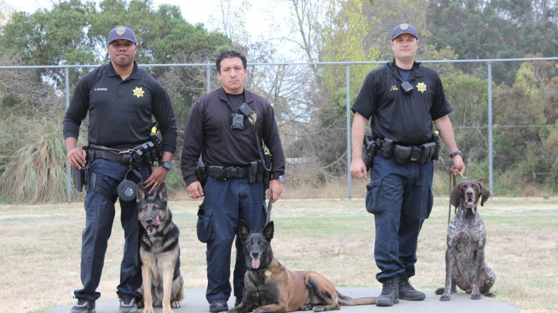 K9 Officer Edwards with Bandi and Former K9 Officer Barrera with Nnely and K9 Officer Ross with Blue